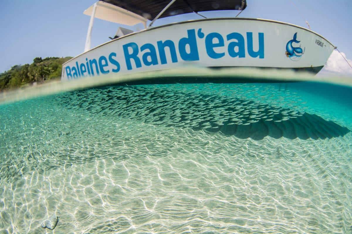 lagon Rand'eau Palmée Tanikely / Sakatia